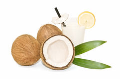 Composition with tropical coconut Royalty Free Stock Photography