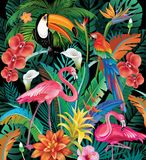 Composition of Tropical Flowers and Birds Stock Photo