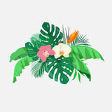 Composition of tropical leaves and exotic flowers Royalty Free Stock Photography