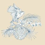 A composition of tropical plants, palm leaves. Monsters and white orchids with cockatoo parrot In botanical style. Graphic drawing, engraving style. vector royalty free illustration