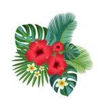 Composition tropicale Illustration de Vecteur