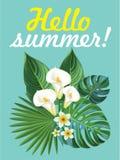 Composition tropicale Carte postale de vecteur Illustration de Vecteur