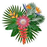 Composition tropicale en bouquet avec le Protea illustration de vecteur