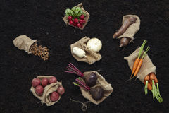 Composition with tubers Royalty Free Stock Image