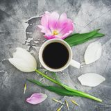 Composition with tulips, petals and mug of coffee on dark background. Blogger concept. Flat lay, top view. Composition with tulips, petals and mug of coffee on Stock Photography