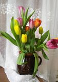 Composition with tulips in vase Royalty Free Stock Images