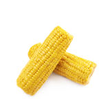 Composition of two corncobs Royalty Free Stock Photos