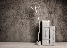 Composition of two white suitcases. Two white suitcase in a concrete wall Royalty Free Stock Images