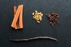 Composition of vanilla stick, cinnamon, cloves and cardamon Stock Image