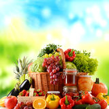 Composition with variety of organic food. Balanced diet Stock Images