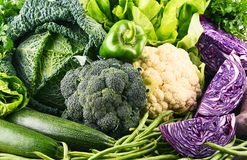 Composition with variety of raw organic vegetables. Stock Photo