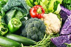 Composition with variety of raw organic vegetables. Stock Images
