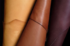 Composition with various colorful skins, leather. Composition with various colorful skins rolled royalty free stock photo