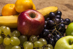 Composition of various fruits Stock Photos