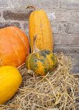 Composition from various pumpkins and straw Royalty Free Stock Images