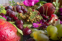 Composition from vegetables and fruit Stock Photos