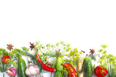 Composition with vegetables  Royalty Free Stock Photo