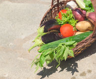 Composition with vegetables  in wicker basket Stock Image