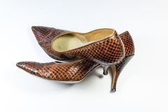 Composition with vintage women`s brown snakeskin shoes, one over the other, on white Royalty Free Stock Image