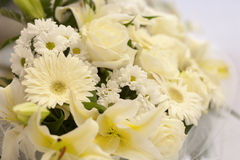 Composition of white flowers Royalty Free Stock Photo