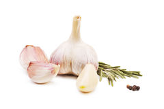 Close-up of a whole garlic and herbs, isolated on a white background. Garlic cloves and garlic bulb with rosemary. Stock Photos