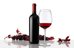 Composition of wine bottle and glass with bunch of grapes Stock Image