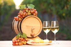 Composition with wine and snacks. On table outdoors stock images