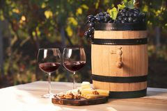 Composition with wine and snacks. On table outdoors stock image