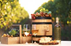 Composition with wine and snacks. On table outdoors royalty free stock image