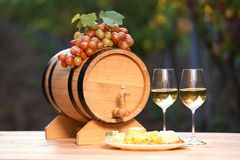 Composition with wine and snacks. On table outdoors stock photos