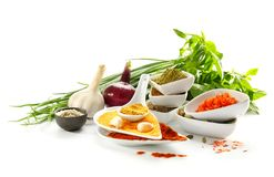 Composition With Different Spices And Herbs On White Background Stock Photos