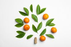 Composition With Fresh Green Citrus Leaves And Tangerines On Background, Top View Royalty Free Stock Images