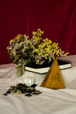 Composition of withered flowers, sketchbook, hand fan, buttons and transparent ball Royalty Free Stock Photography