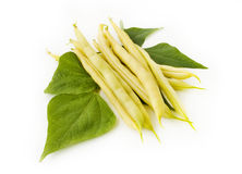 Composition of yellow beans with leaves. Isolated on white background Stock Photography