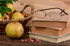 Composition of yellow pomegranates and old book Royalty Free Stock Photo