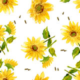 The Composition of Yellow Sunflower. Painted in Watercolor for your Design Stock Photo