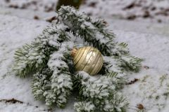 Compositions from a Christmas tree decoration in the winter forest.  stock images