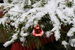 Compositions from a Christmas tree decoration in the winter forest.  royalty free stock image
