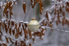 Compositions from a Christmas tree decoration in the winter forest. Compositions from the Christmas tree toy in winter forest royalty free stock images