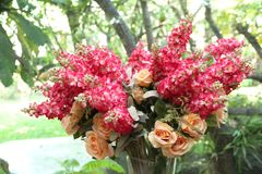 Compositions florales dans des vases photographie stock libre de droits