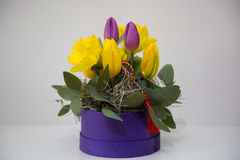Compositions florales en ressort Image stock