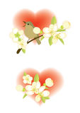 Compositions with hearts. Two compositions with hearts and spring flowers and bird Stock Images