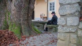 Compositor de la música clásica del romántico al jardín almacen de video