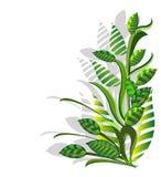 Composizione con le piante verdi Fotografie Stock