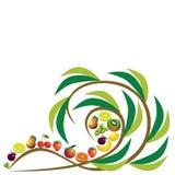 Composizione astratta in frutti, insieme differente dell'icona di frutti Immagine Stock
