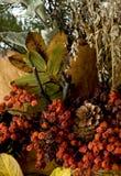 Composizione in autunno fotografie stock libere da diritti