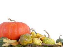 Composizione in autunno Immagine Stock Libera da Diritti