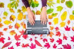 Composizione in autunno: area di lavoro con le mani sulla tastiera del computer portatile sul fondo variopinto caduto dell'arcoba fotografie stock libere da diritti