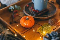 Composizione in autunno con la zucca Fotografia Stock Libera da Diritti