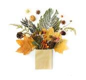 Composizione in autunno con le foglie immagine stock